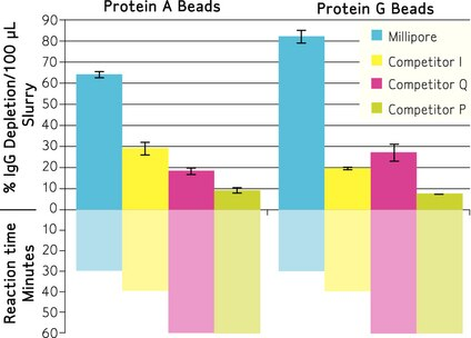 Comparison of Protein Bead Effectiveness<br /><br />Table 1.: Rabbit Serum (50 uL) diluted with PBS was incubated with Protein A and Protein G magnetic beads per manufacturer's instructions.  An ELISA assay was used to determine the percentage of IgG depleted and the results were normalized by the volume of slurry used per reaction.